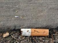 30 billion cigarette ends dumped on pavements -  Photo: Aleksander - Fotolia.com