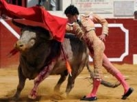My first bullfight and I want more