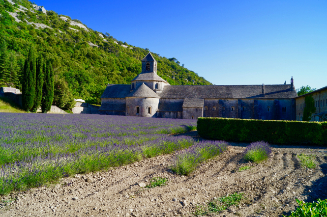 Will French property prices rise post-lockdown? Pictured: a French château in the vibrant lavender fields of Provence, France