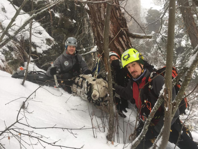 Equipe de Secours Animalier en Montagne