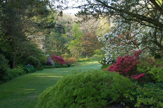 One stunning corner of the garden