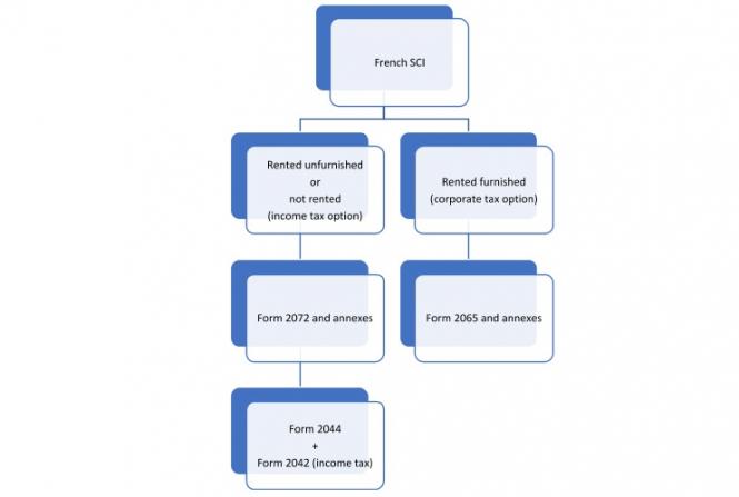 SCI flow chart