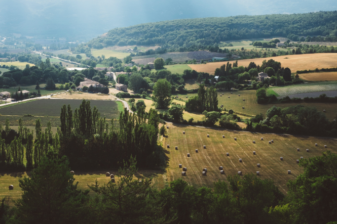 Will house prices rise in France post-lockdown? Pictured: serene countryside in Gordes, France