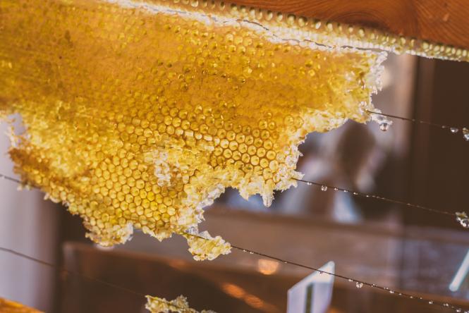 """""""The spring flowering was very abundant"""" says beekeeper Yves Robert."""