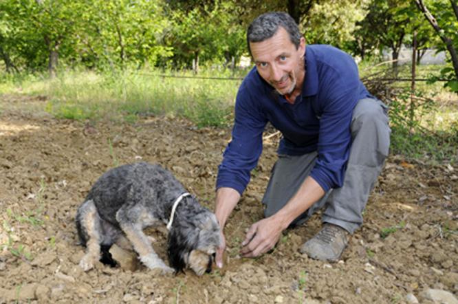 Truffle farmer Christian
