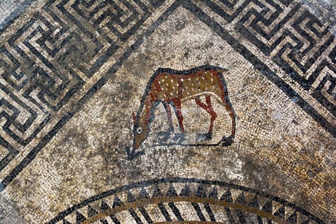 A mosaic fawn