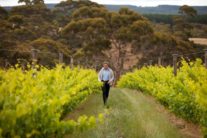 Winemaker Jacques Lurton walking in his Australian vineyard.