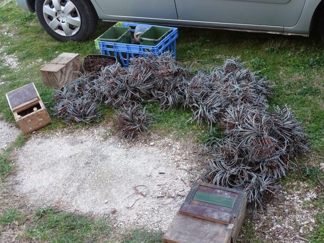 wire traps
