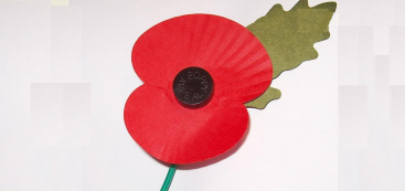 imitation red poppy with green leaf