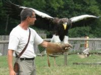 Jacques-Olivier Travers with Victor the white-tailed sea eagle