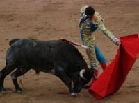 A matador before killing the bull - Photo: MarcusObal