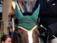 Annie Ettlinger's anti-fly horse hat