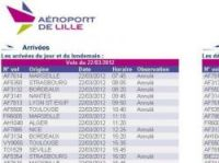 Lille Airport flights cancelled