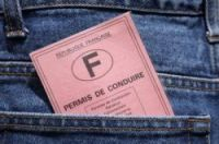 More than 500,000 pink licences go missing each year
