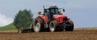 Some French farmers want to plant GM corn this spring