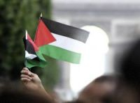 A Palestinian flag is waved at a 2009 march in Paris