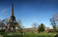 About 100 trees around the Paris landmark had been vandalised with nails and paint