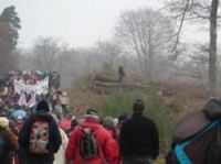 Protesters march through the forest near the Center Parcs site - Photo: Zone à Défendre Roybon