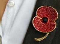 New poppy brooch