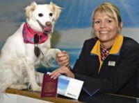Pet passports allow animals to cross borders