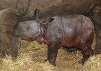 Photo: Parc zoologique CERZA