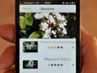 PlantNet app helps identify French plants