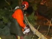 A power worker clears fallen trees - Screengrab: France TVinfo
