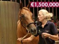 Arqana's top price was 1.5million euros