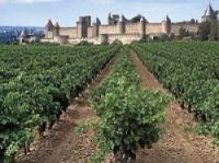 The Languedoc-Roussillon region has roughly a quarter of France's vineyards