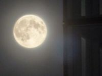 A super Moon looks especially large and bright