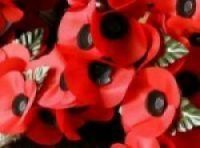 We hope, with your help, to boost the Poppy Appeal fund and support the Royal British Legion