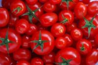 Tomatoes and strawberries sold in French supermarkets fail taste test