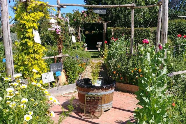 Brigitte Bachelier's garden
