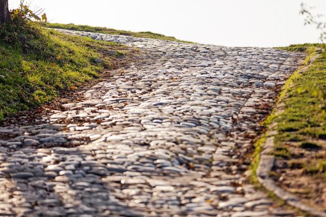 Cobble pathway