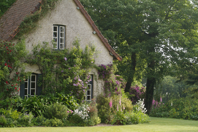 Garden in Dieppe