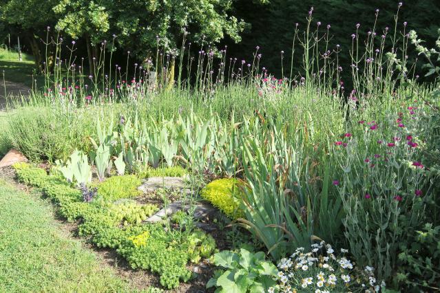 Jardin des Plantes Magiques Open Garden in Yzeures-sur-Creuse