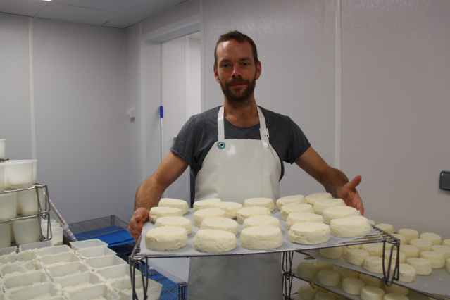 Man in white apron carrying tray of round white cheeses
