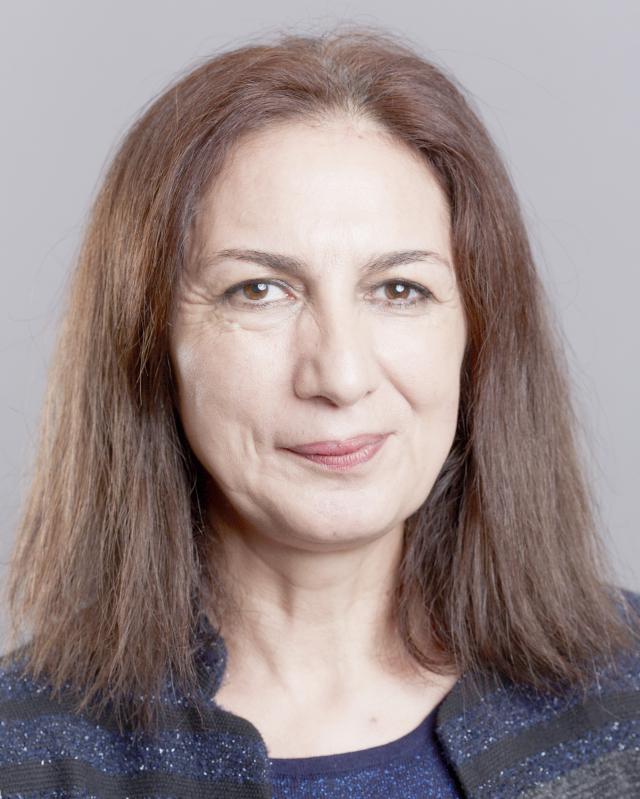 SALAMI DADKHAH-FOROUGH Brittany Vice President