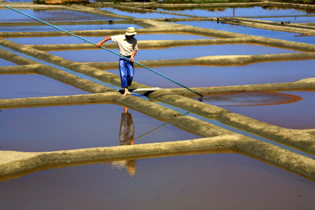 Saltmarsh worker maintains the Marais Salants salt pans at Guérande, Loire-Atlantique