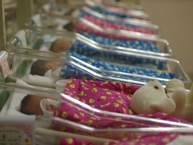 babies in nursing cots at a maternity unit