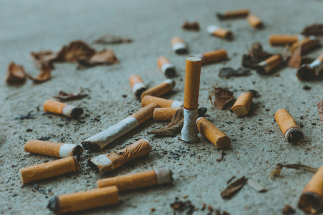 cigarette butts in the street