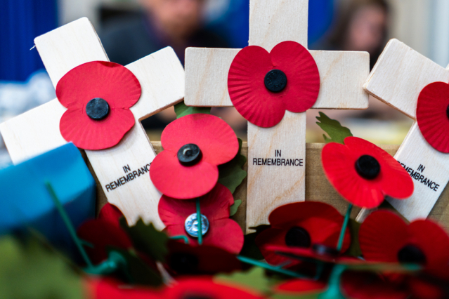 RBL poppies and crosses