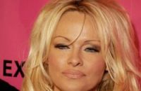 Pamela Anderson kicked up a storm in French parliament when she appeared there