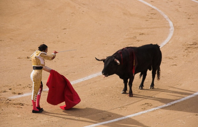 A matador in a bullfighting ring with a bull. Southern French village of Vergeze cancels all future bullfight events to mixed response