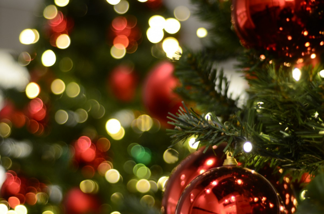 Christmas In French.French Agency Advice On How To Choose A Christmas Tree