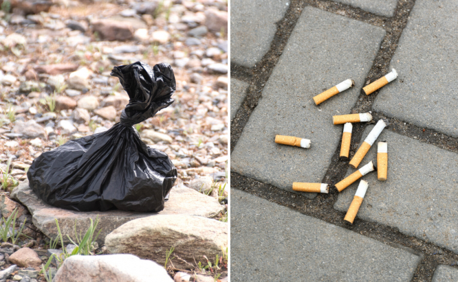 A plastic bag of dog waste and cigarette butts on asphalt. Bas-Rhin: French town imposes €1,000 fine for dog mess or littering