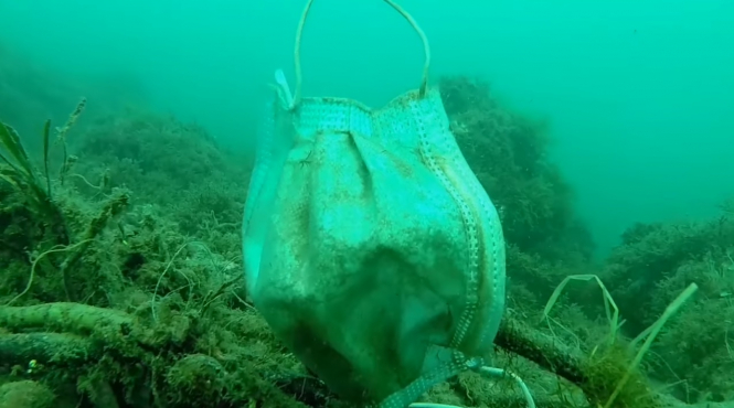 A surgical masks floats in the sea and litters the sea bed, as eco groups warn of the impact of littering from non-biodegradable masks and gloves
