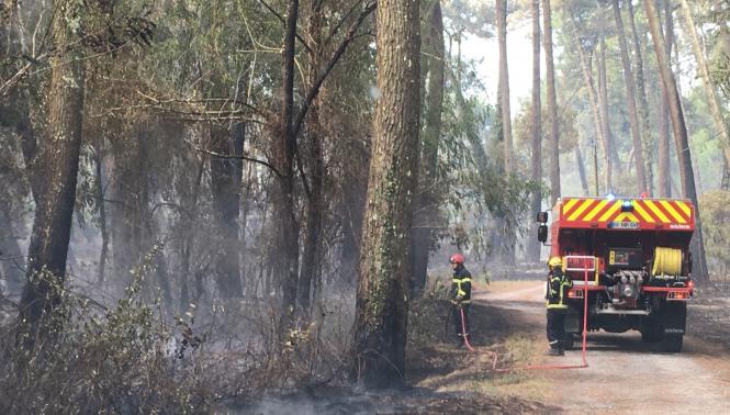 A fireman and a firetruck in Chiberta forest