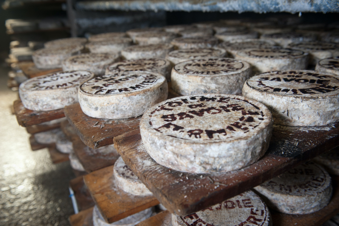 France's cheese controversy: raw or pasteurised?
