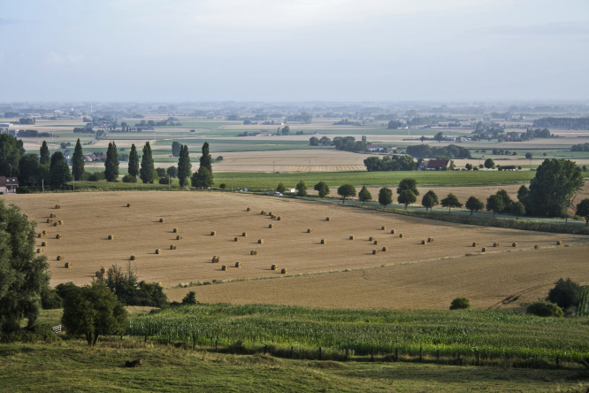 Here's what you need to know if you Want to build on farmland in France